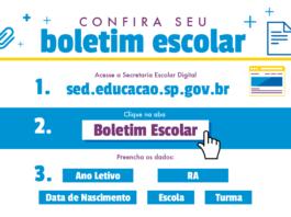 Boletim Online SP 2022